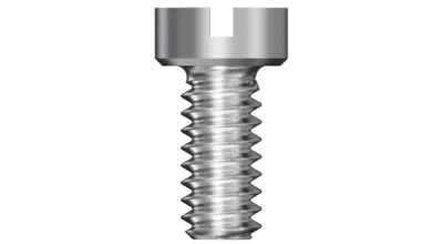 Bridge Screw, Slot
